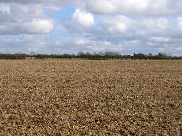 Landscape NW of Weasenham All Saints, Norfolk