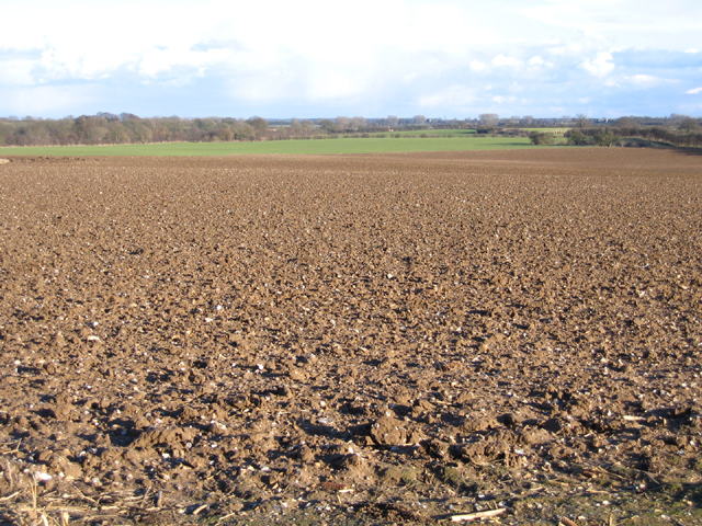 Landscape W of Weasenham St Peter, Norfolk