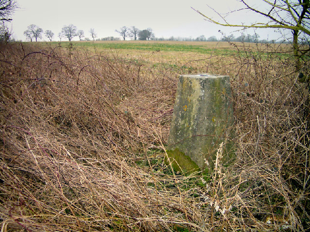 Trig point on Down Hill