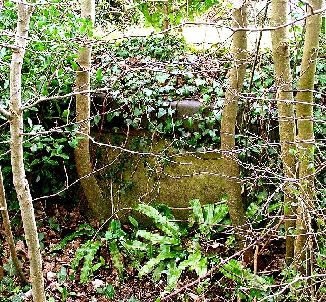 Remains of platform, Abbotsbury station