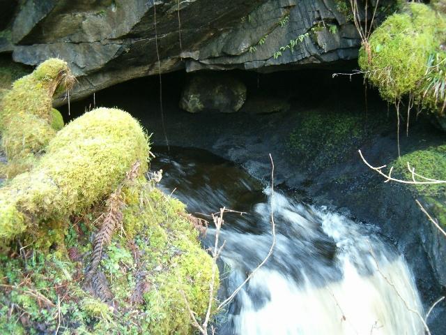 Finchairn River Cave - Resurgence