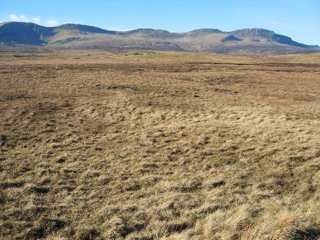 Boggy Moorland near Lealt