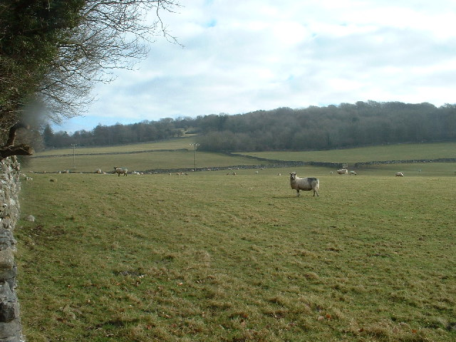 Farmland at Clawthorpe