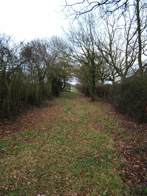 Bridle Path to Buckhatch Farm