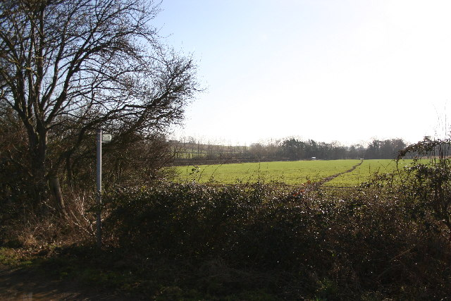 Footpath to Brattleby