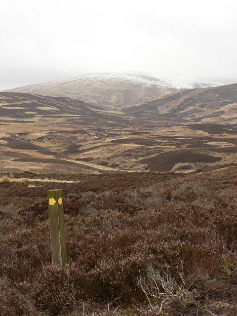 Footpath waypost