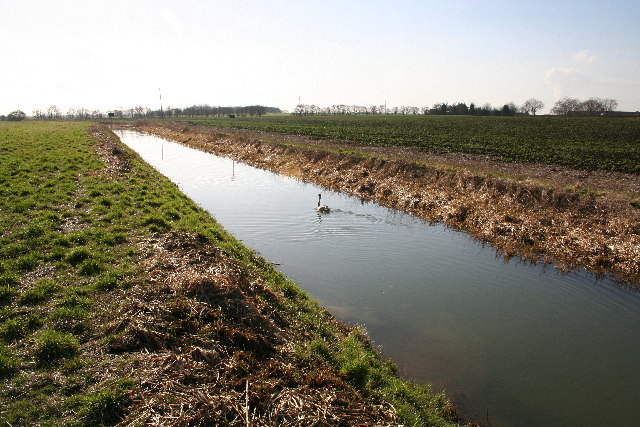 River Ancholme
