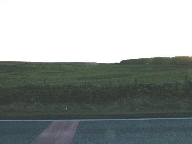 Oswaldtwistle Moor