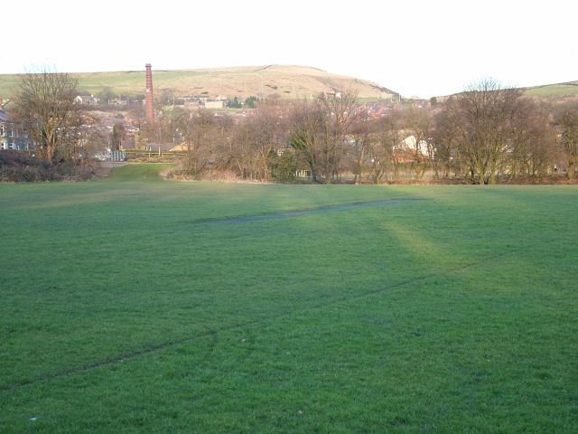 Lane Side Cricket Field