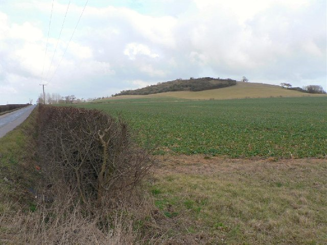 Westend Hill, Cheddington