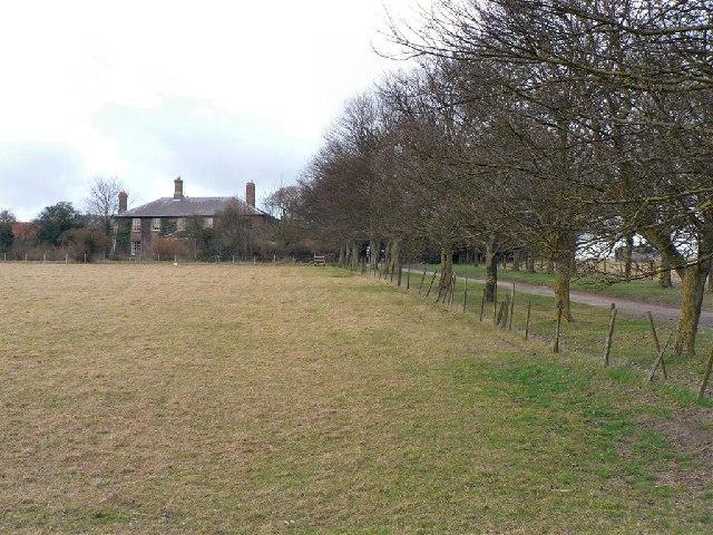 Town Farm