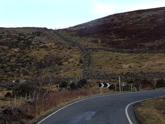 Hillside behind Moel Rhiwen
