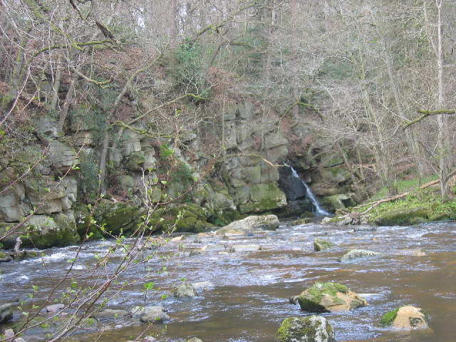 Devil's Water, near Hexham