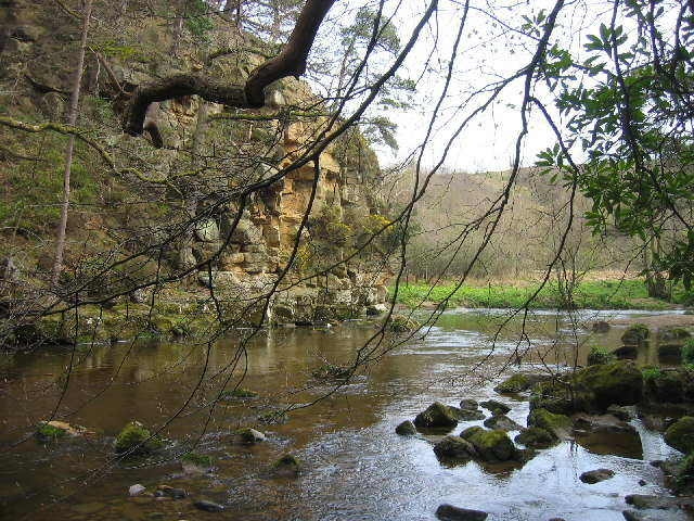 Devil's Water, near Corbridge