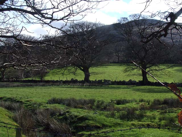 Fields behind Rhyd y Groes