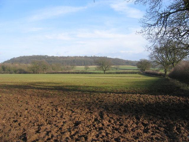 Footpath to Billesley