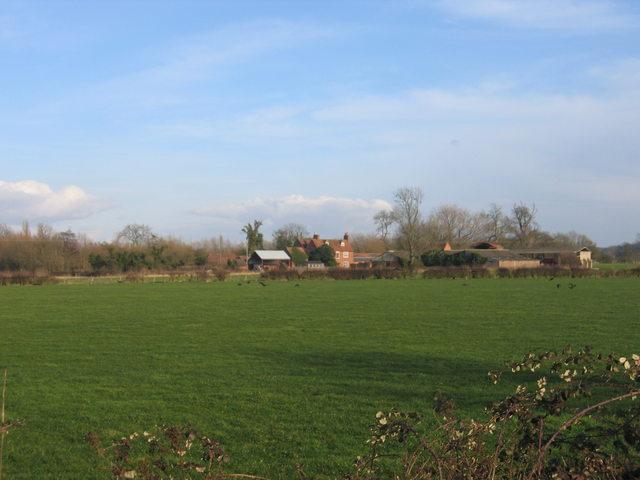 View from Pelham Lane
