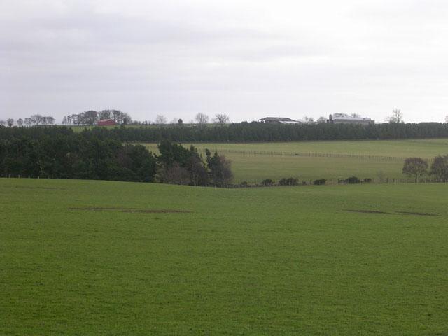 Gibbet Hills viewed from Fir Tree