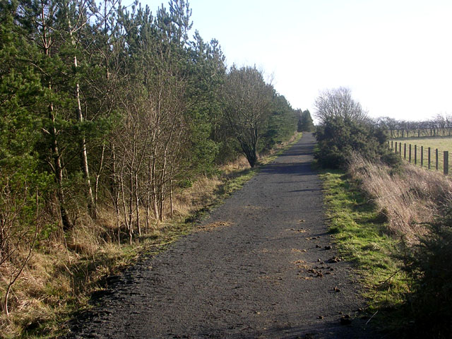Deerness Valley Path near Stanley Crook
