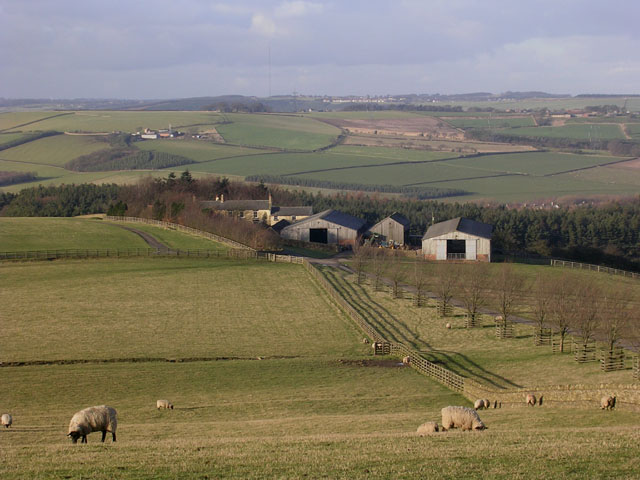 The appropriately named Standalone Farm, above Esh Winning