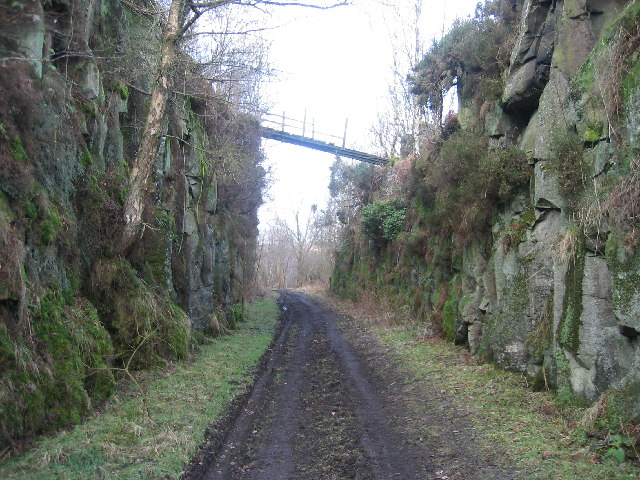 Cutting on Disused Railway Line