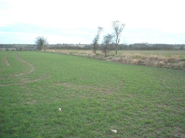 Fields near Guston