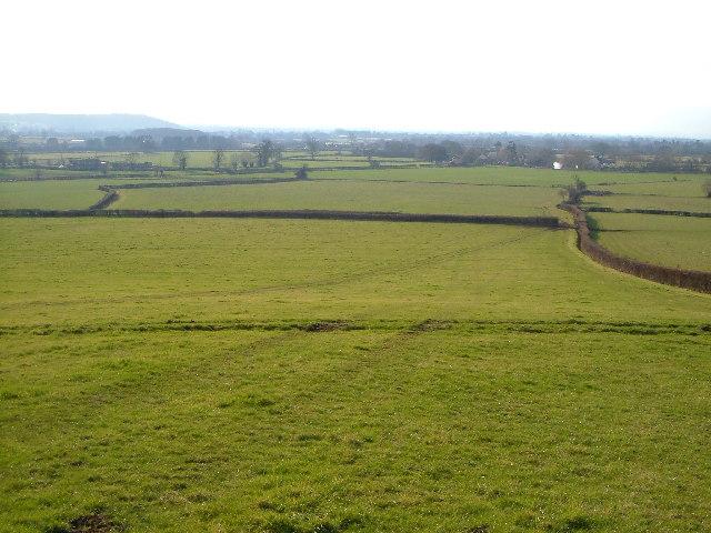 West Moor, Tone Valley, from nr Knapp