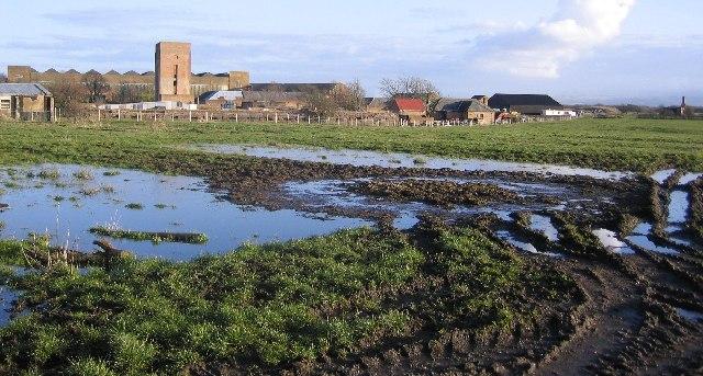 Lowther  Farm