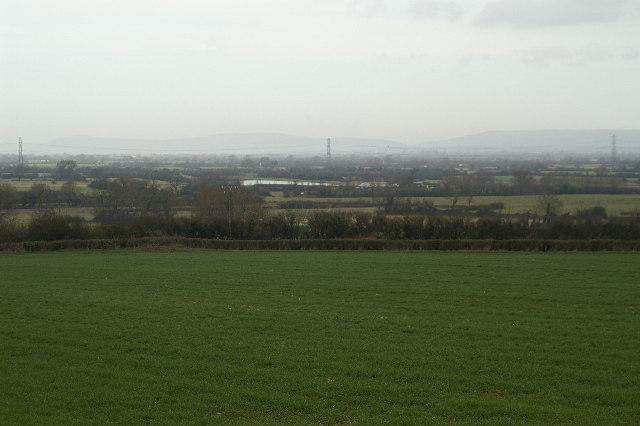 Field, Woolavington Level