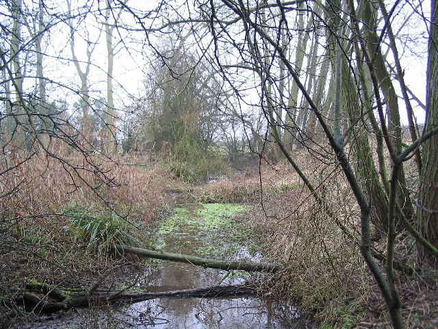 Source of the River Eye at Hamwell Spring, Bescaby