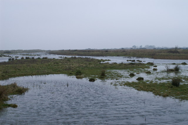 Marsh on Walt Common