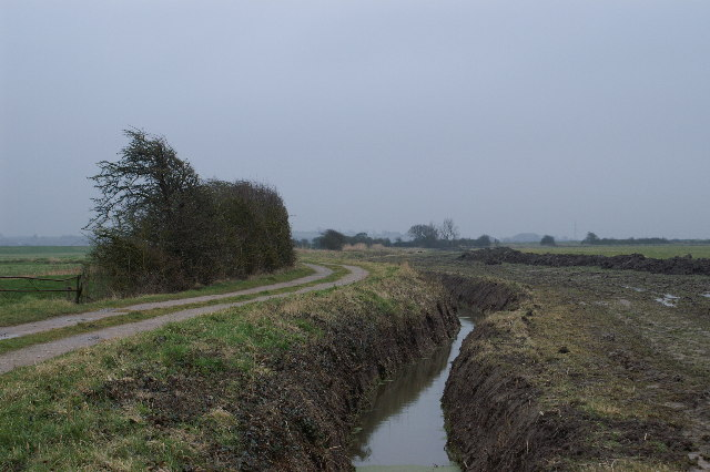 Track, near the start of the River Parrett Trail