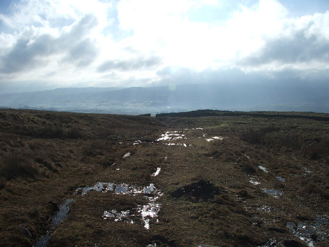 Looking Back to Hearne Top.