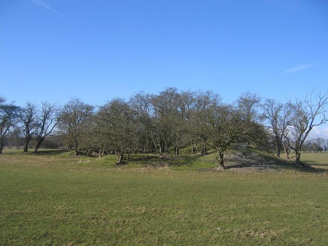 Quarry debris mound