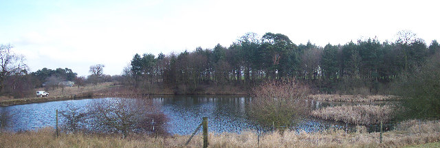 Tatton Mere Mill Pool