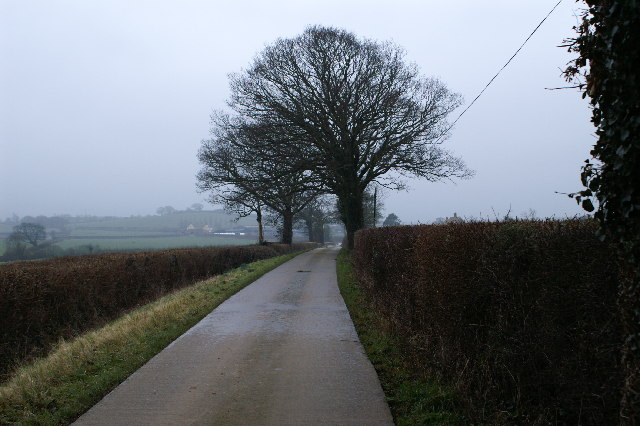 Track to Peadon Farm