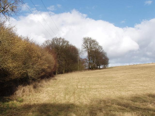 Field in Chorleywood near Newland Park