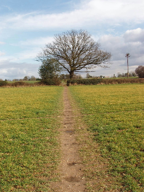 Footpath through crops, Horn Hill