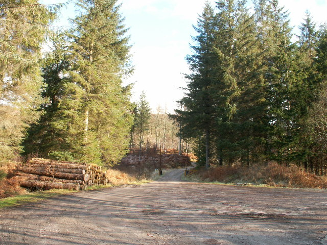 Forestry operations, by Fassfearn