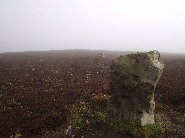 Standing stones? at Simon Howe