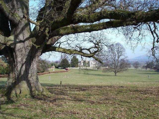 Bodelwyddan Park