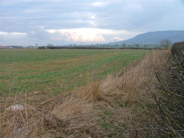 Arable Land at Beech Hill