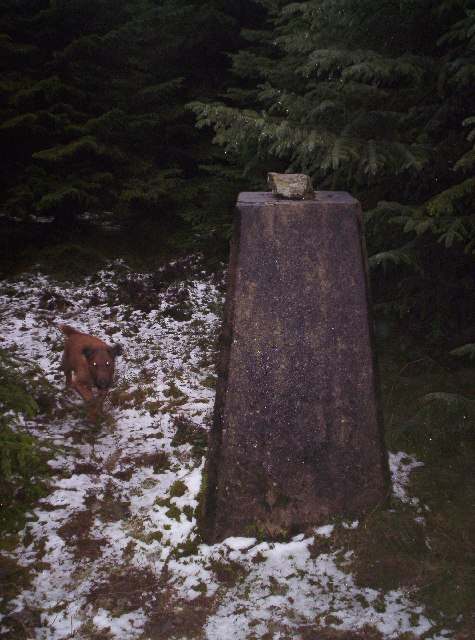 Trig Point and Leo