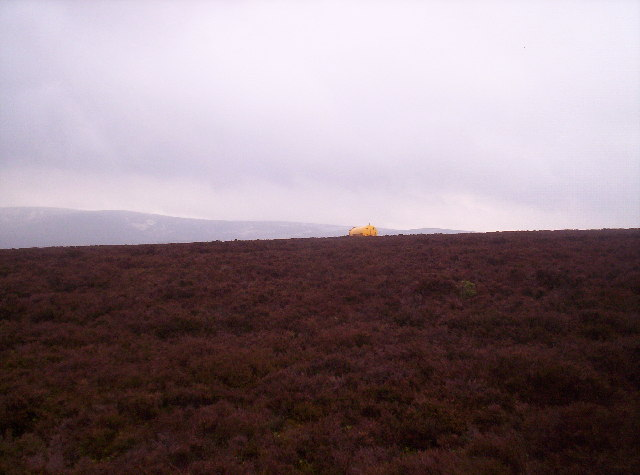 Heather, Farm Machinery and Cairn o' Mount