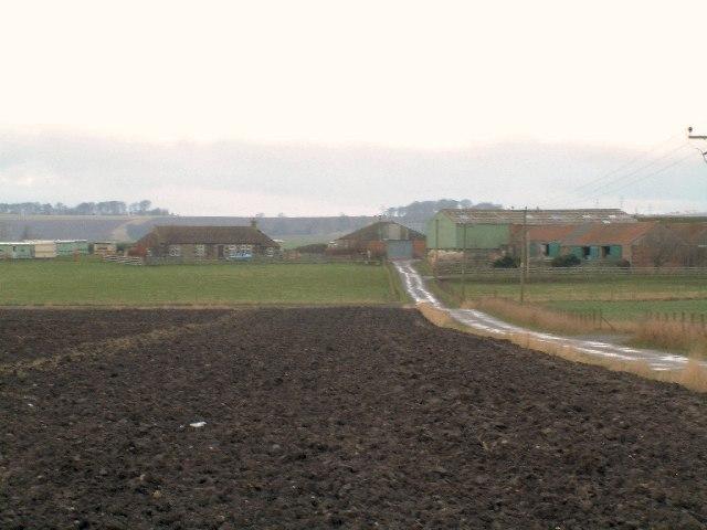 Little Lun Farm
