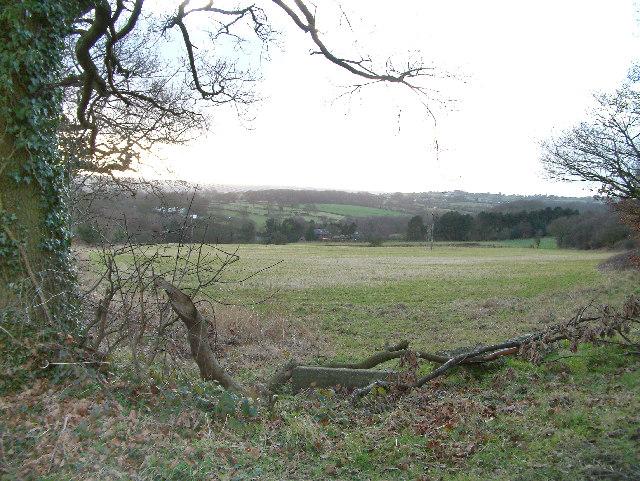 Countryside near Cowley