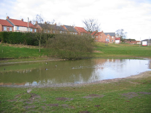Fridaythorpe, Duck Pond