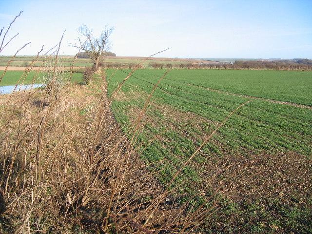 Farmland North of the A166