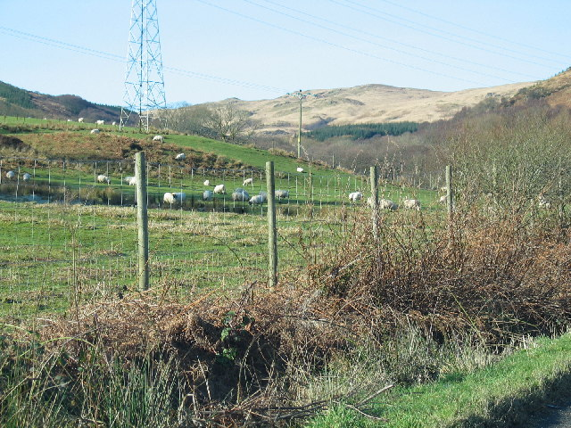 Ann Torr from the A83 Loch Fyneside.