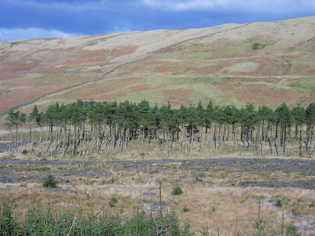 North side of Cairnoch Hill